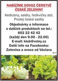 Čerstvá česká zelenina